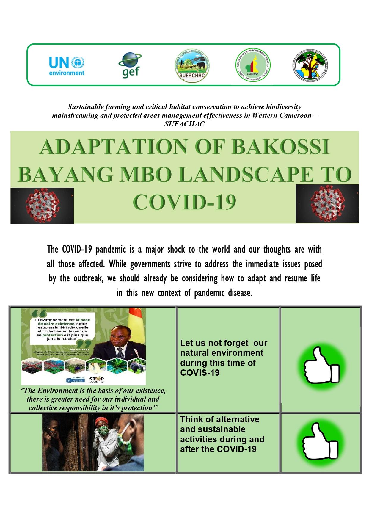 ADAPTATION OF BAKOSSI BAYANG MBO LANDSCAPE TO COVID-19